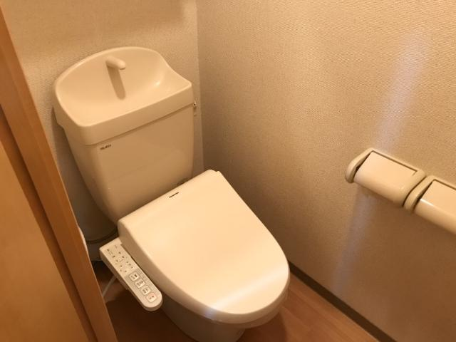 グランド ソレイユ 203号室のトイレ