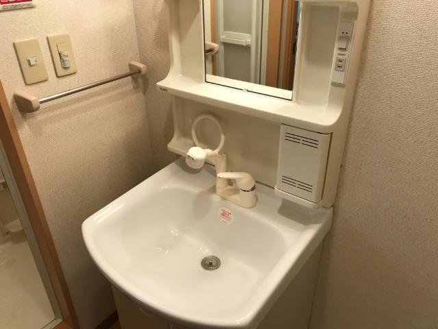 グランド ソレイユ 203号室の洗面所