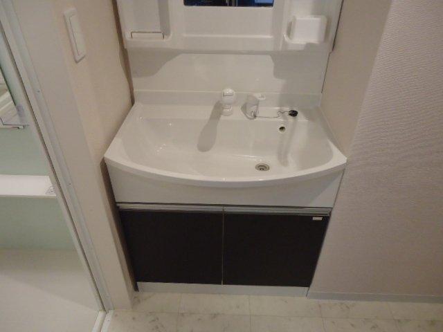 トレシャーナ 410号室の洗面所