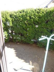サンコーポ麻樹 103号室の庭