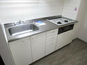 グリーンガーデン武蔵浦和 0310号室のキッチン