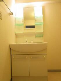 グリーンガーデン武蔵浦和 0310号室の洗面所