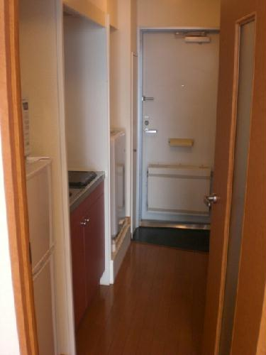 レオパレス富士見Ⅱ 209号室の玄関