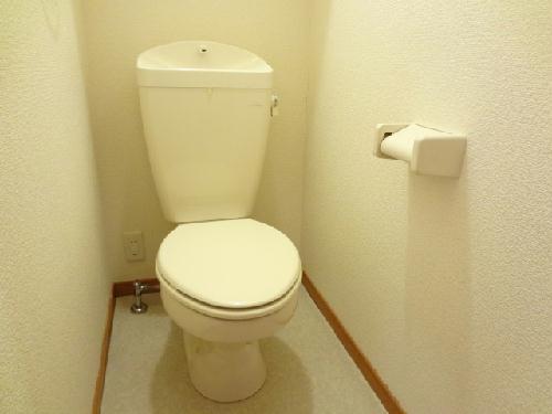 レオパレススターエンジェル 206号室のトイレ