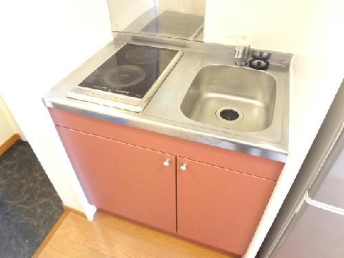 レオパレススターエンジェル 206号室のキッチン
