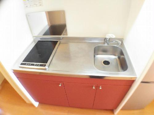 レオネクストスイートピー 206号室のキッチン
