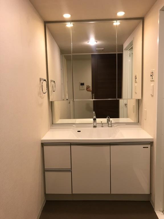 ルネ ファンタグラーレ府中是政 409号室の洗面所