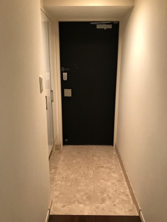 ルネ ファンタグラーレ府中是政 409号室の玄関