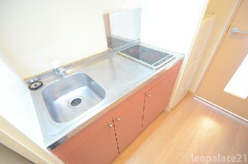 レオパレスエクセルハイムⅡ 302号室のキッチン