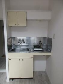 プラザ ドウメドック 203号室のキッチン