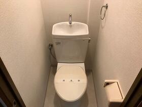 ウェルネス高津 101号室のトイレ