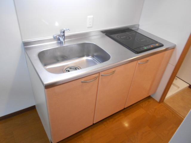 コリドール天神川 302号室のキッチン