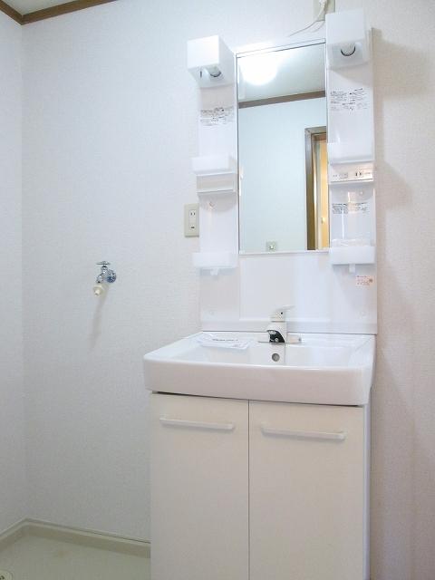 トゥルスⅠ 01010号室の洗面所