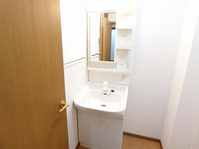 マイネ・S5 02020号室の洗面所