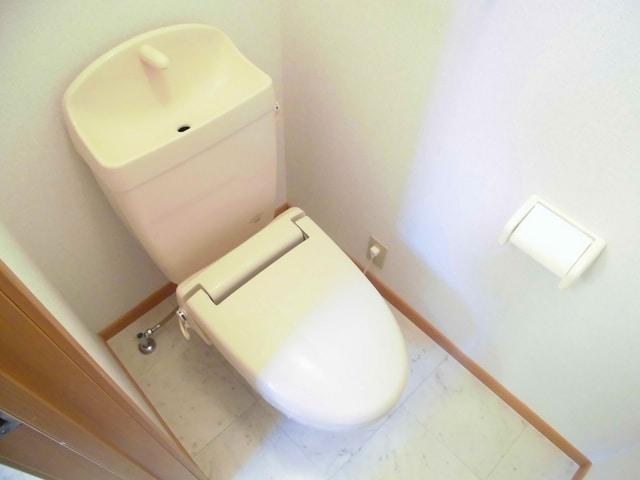 コリーヌ・オーブB 01020号室のトイレ