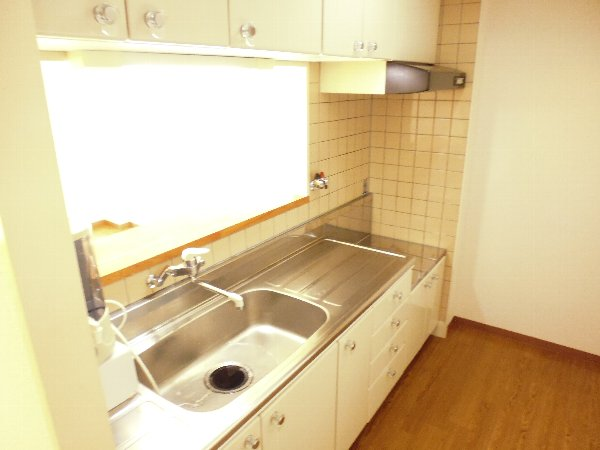 カサ・デ・高ノ手 501号室のキッチン