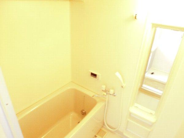 カサ・デ・高ノ手 501号室の風呂