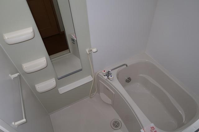 シャンドフルールH 01010号室の風呂