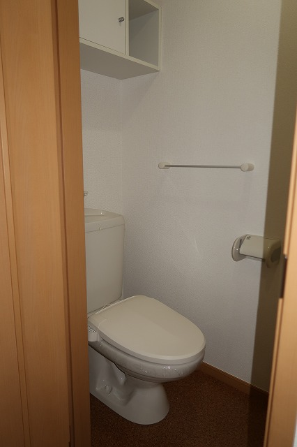 シャンドフルールH 01010号室のトイレ