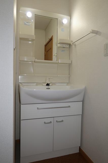 シャンドフルールH 01010号室の洗面所