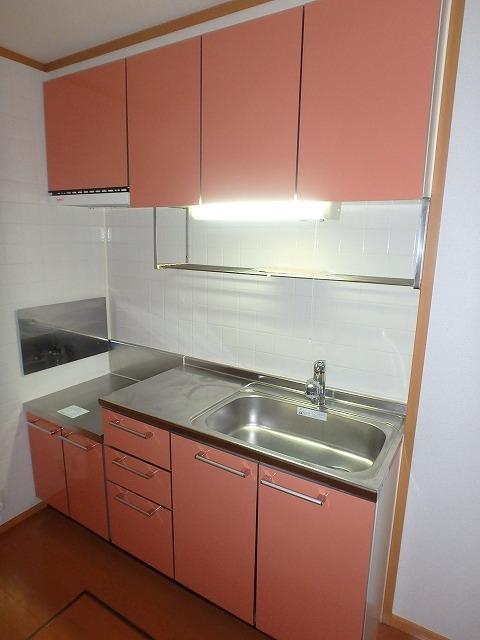 ヴァルトハウス 01040号室のキッチン