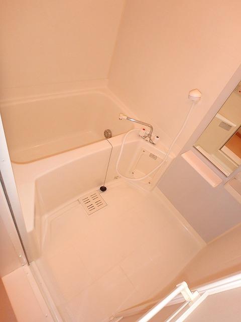 ヴァルトハウス 01040号室の風呂