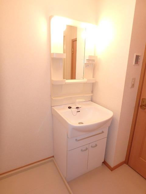 ヴァルトハウス 01040号室の洗面所