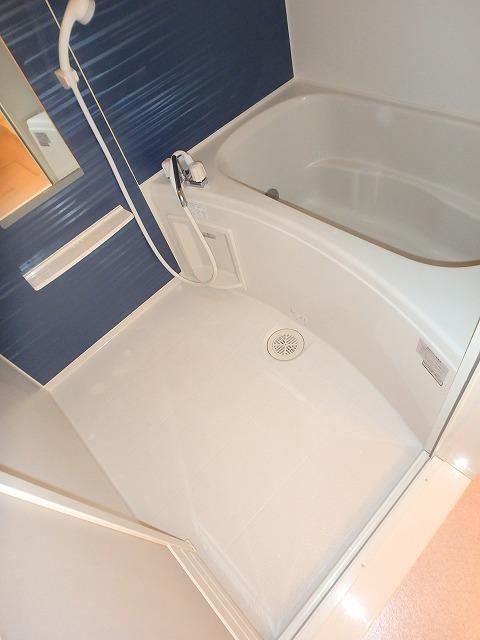 ヴァイオレットミニョン 02010号室の風呂