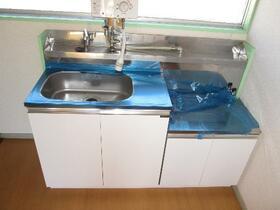 秦正コーポ 0202号室のキッチン