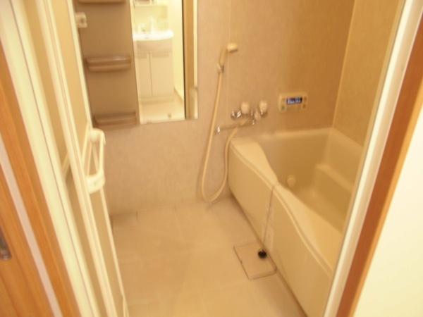 アムール 202号室の風呂