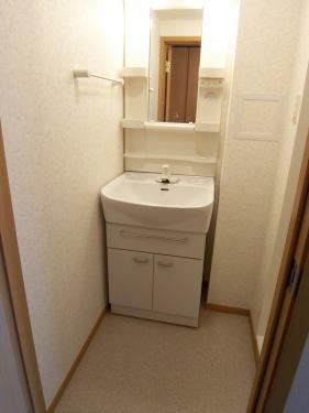 ハイライズ ミズキ 01040号室の洗面所