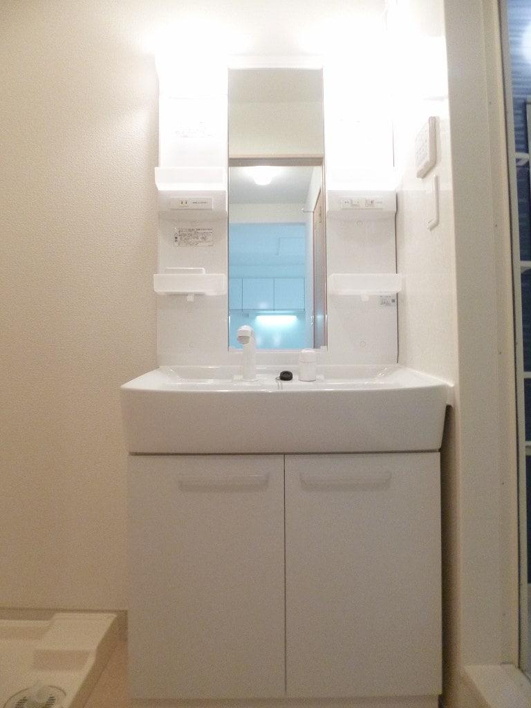 ルミナス 01030号室の洗面所