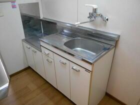 ホワイトコート綱島 A110号室のキッチン