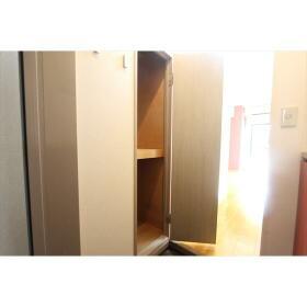 グリーンキャピタル大和 207号室の収納