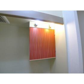 グリーンキャピタル大和 207号室のトイレ