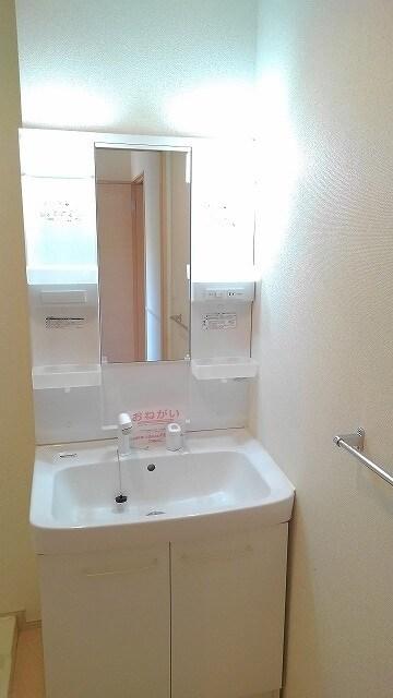 グラン・コート スピカⅡ 01010号室の洗面所