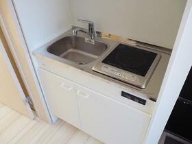 PROBANK墨田 202号室のキッチン