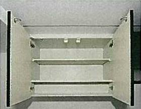 レアシス練馬 302号室の収納