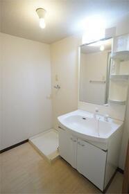 メゾンコスモス 203号室の洗面所