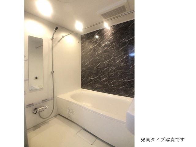 ミルキーウェイB 01040号室の風呂