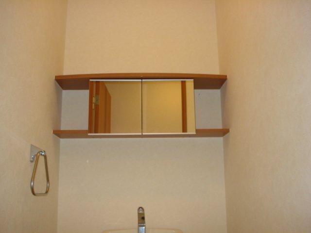 グリーンハイム住吉 201号室のトイレ