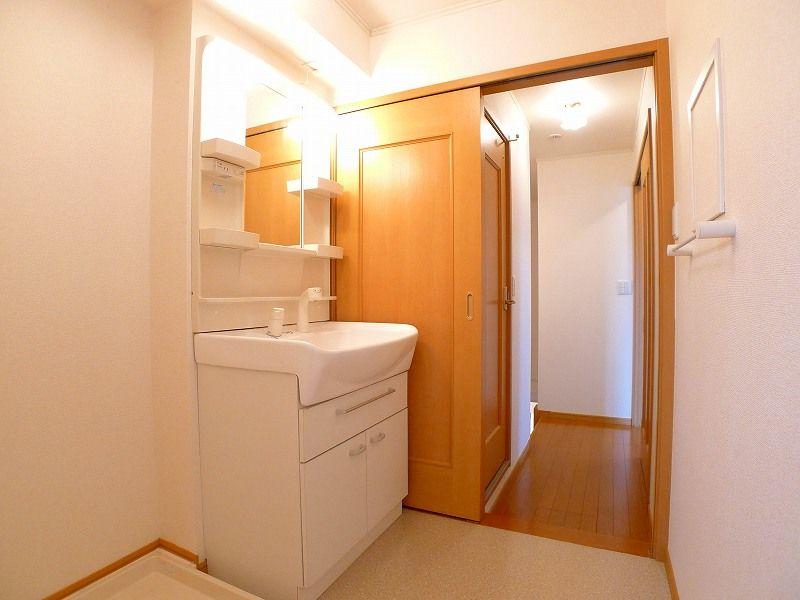グランパラン A 02010号室の洗面所