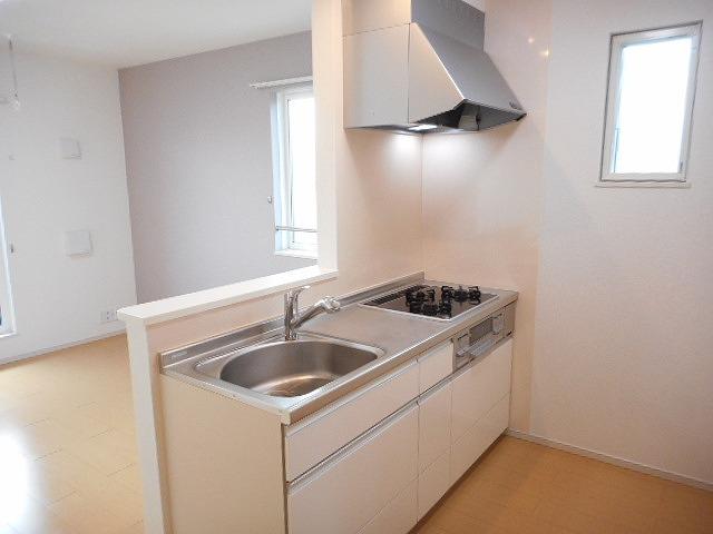 カーサ プラシード 02020号室のキッチン