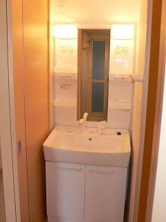 ハピネス ガ-デン 01010号室の洗面所