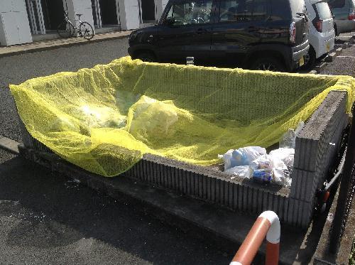 レオネクストエンブレム並榎 207号室の玄関