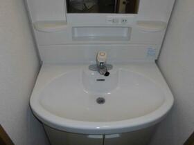 ウイングパーク 0703号室の洗面所