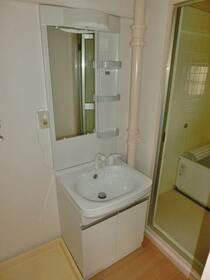 グランディール藤清 壱番館 207号室の洗面所