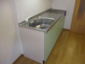 Felice gatto Wada(フェリスガトーワダ) 105号室のキッチン