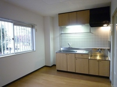 クレセントイワイ 01040号室のキッチン