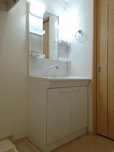 プルメリア B 01010号室の洗面所